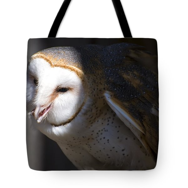 Barn Owl 1 Tote Bag by Chris Flees