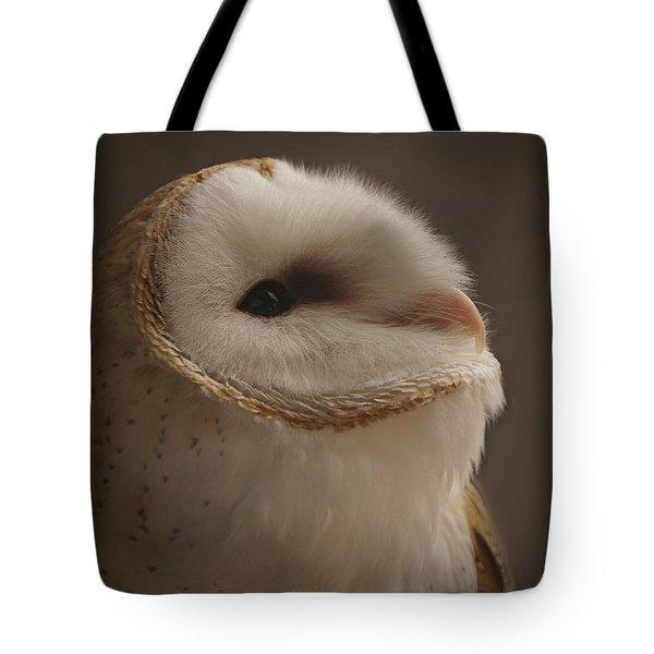 Barn Owl 4 Tote Bag