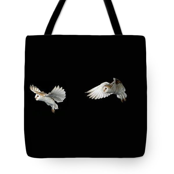 Barn Owl In Flight Tote Bag by Stephen Dalton