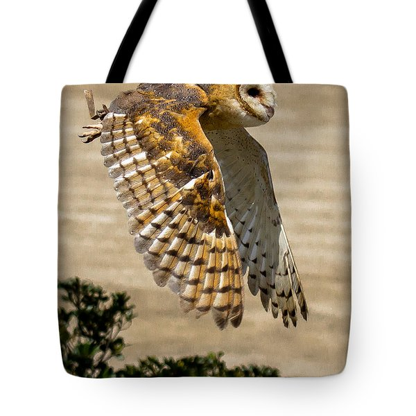 Barn Owl Tote Bag by Robert L Jackson