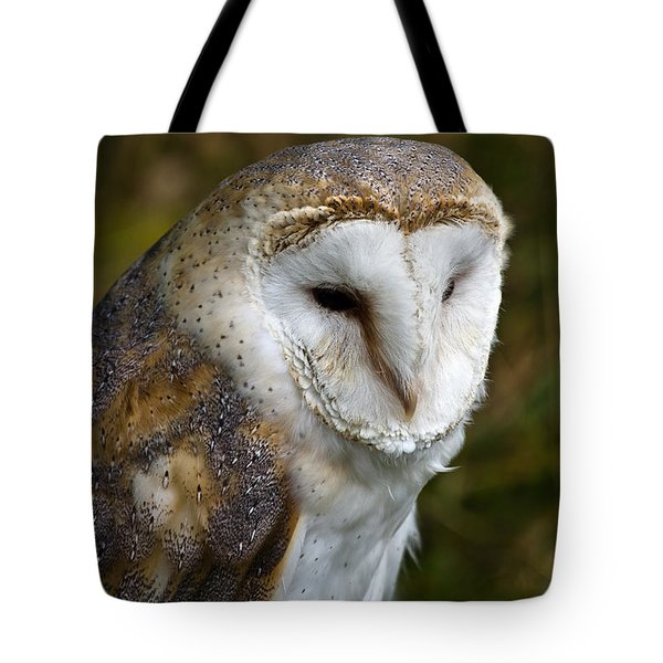 Barn Owl Tote Bag by Scott Carruthers