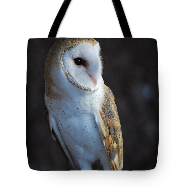 Barn Owl Tote Bag by Sharon Elliott