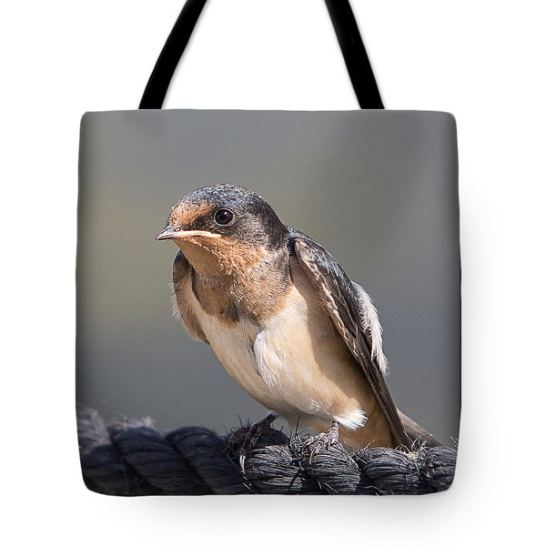 Tote Bag featuring the photograph Barn Swallow On Rope I by Patti Deters