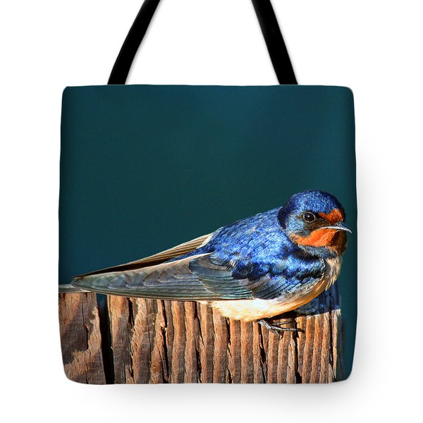 Tote Bag featuring the photograph Barn Swallow Perching by Bob and Jan Shriner
