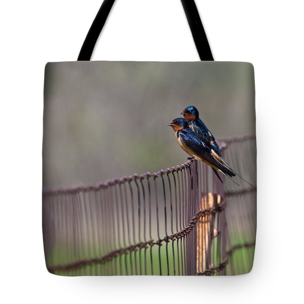 Barn Swallows On The Fence Tote Bag