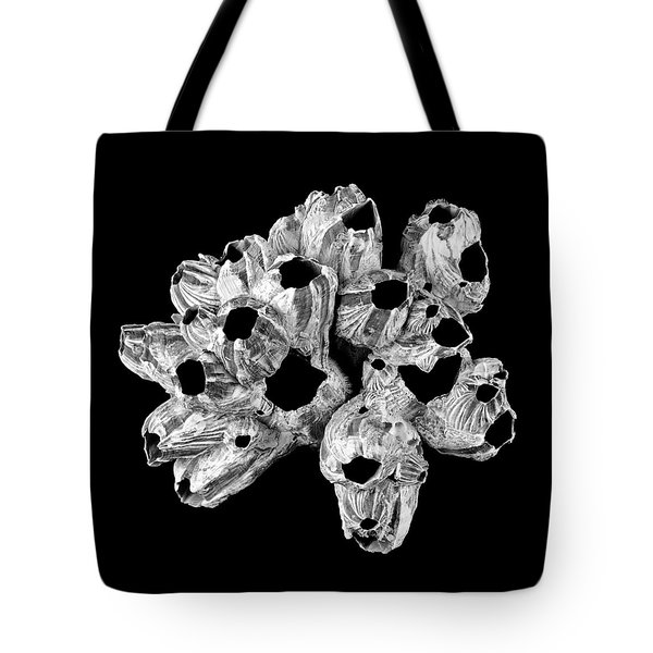 Barnacle Shell Tote Bag