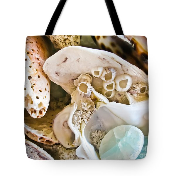 Barnacles And Shells Tote Bag by Colleen Kammerer