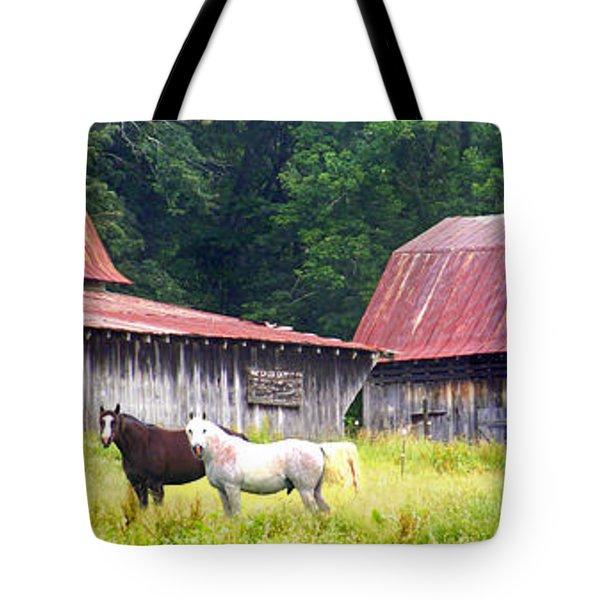 Barns And Horses Near Mills River Nc Tote Bag