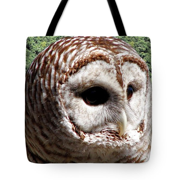 Barred Owl 2 Tote Bag by Rose Santuci-Sofranko