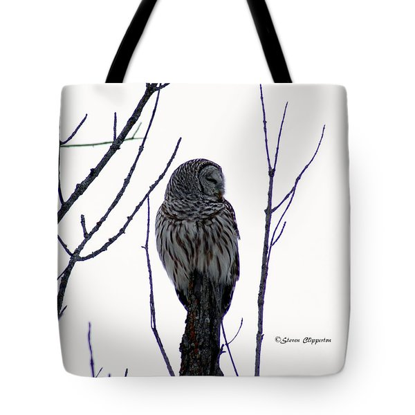 Barred Owl 3  Tote Bag by Steven Clipperton