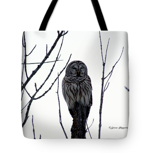 Barred Owl 4 Tote Bag by Steven Clipperton