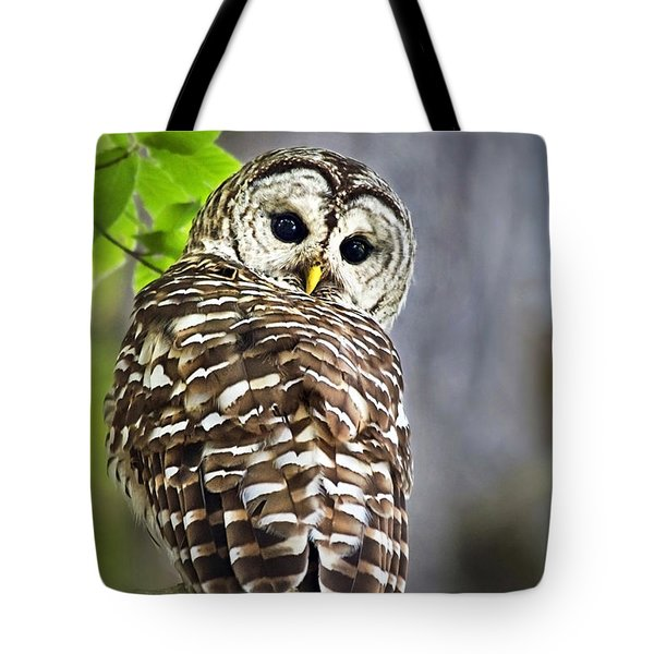 Tote Bag featuring the photograph Barred Owl by Christina Rollo