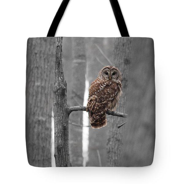 Barred Owl In Winter Woods #1 Tote Bag