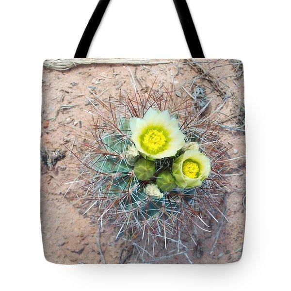 Barrel Cactus Blossoms Tote Bag