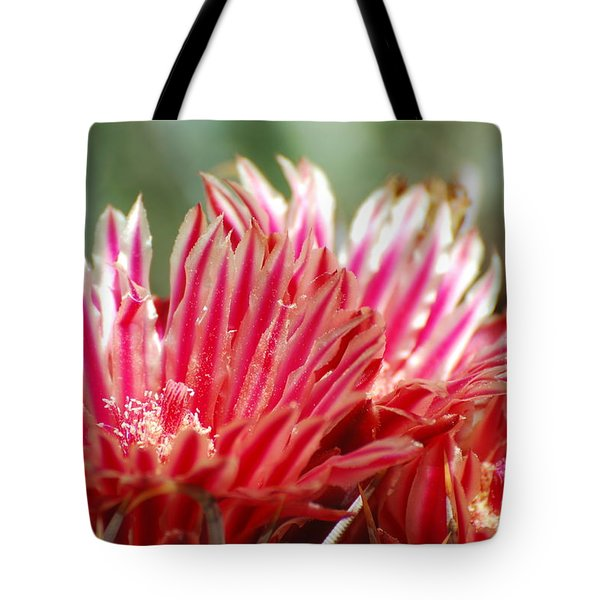 Barrel Cactus Flower Tote Bag