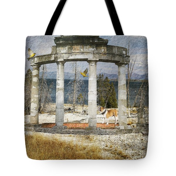 Tote Bag featuring the digital art Barren Shoreline by Liane Wright