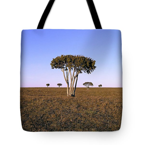 Barren Tree Tote Bag