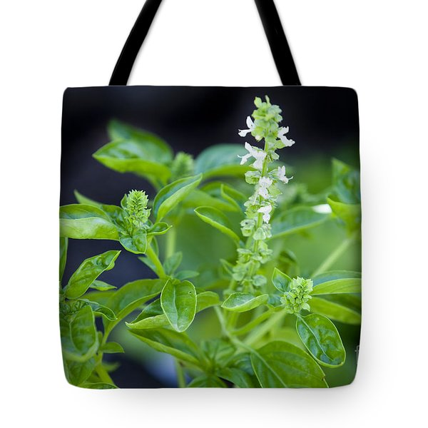 Tote Bag featuring the photograph Basil With White Flowers Ready For Culinary Use by David Millenheft