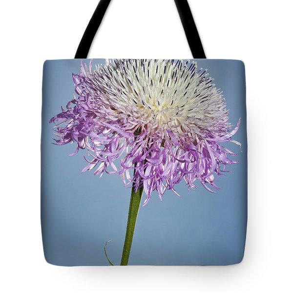 Basket-flower Blocking The Sun Tote Bag