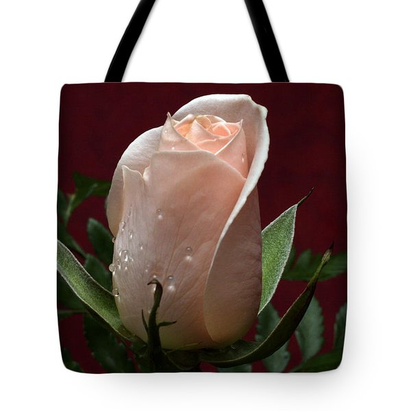 Tote Bag featuring the photograph Basking by Doug Norkum