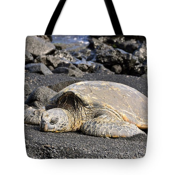 Tote Bag featuring the photograph Basking In The Sun by David Lawson