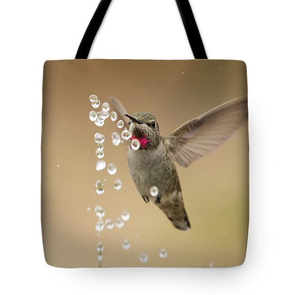 Bath Time For Anna's Hummingbird Tote Bag by Doug Herr