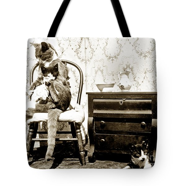 Tote Bag featuring the photograph Bath Time For Kitty Circa 1900 Historical Photos by California Views Mr Pat Hathaway Archives