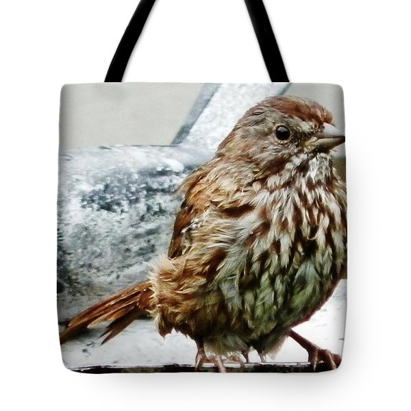 Tote Bag featuring the photograph Bathe Then Fluff by VLee Watson