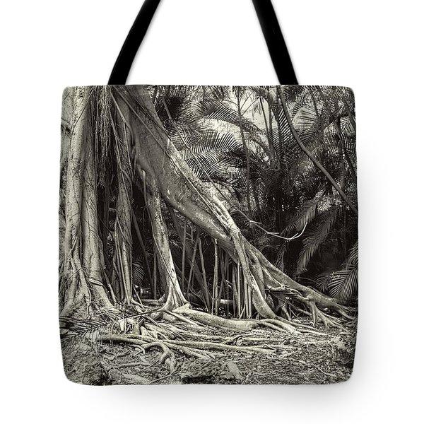 Strangler Fig Tote Bag