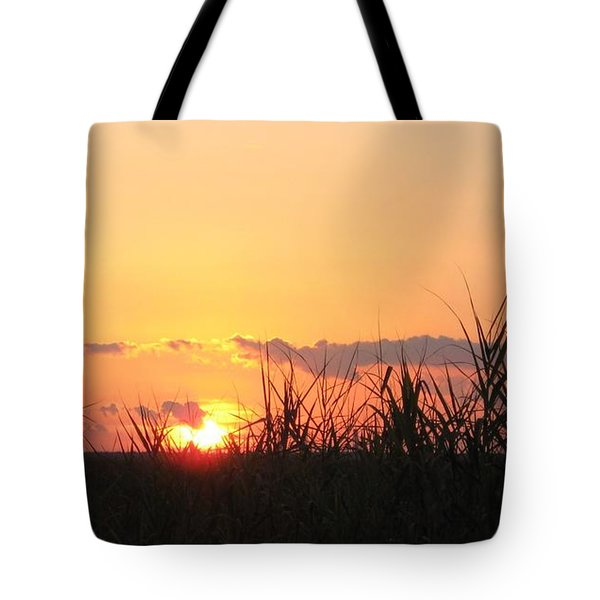 Tote Bag featuring the photograph Bayou Sunset by John Glass