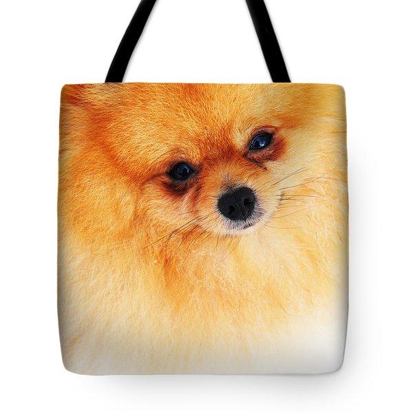 Be My Valentine Tote Bag by Jenny Rainbow