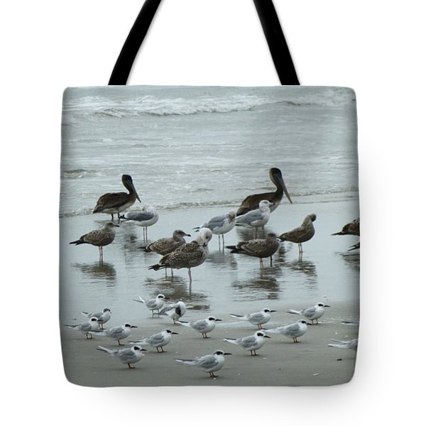 Tote Bag featuring the photograph Beach Birds by Judith Morris