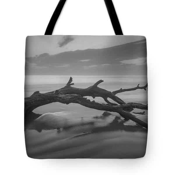 Beach Bones Tote Bag by Debra and Dave Vanderlaan