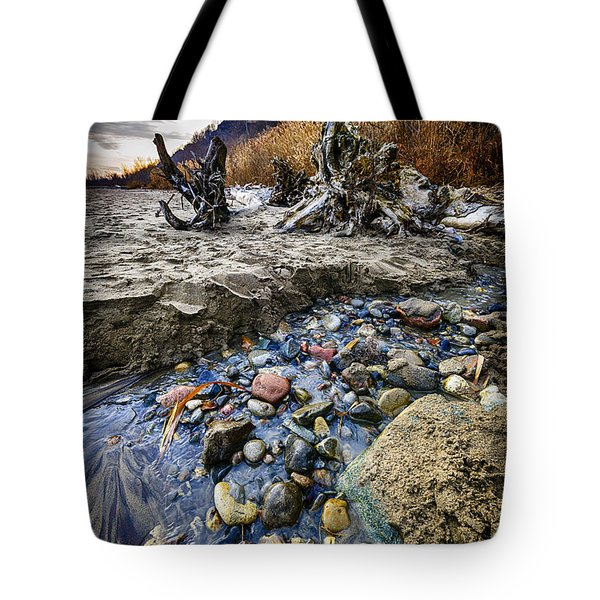 Beach Brook At Scarborough Bluffs Tote Bag by Elena Elisseeva
