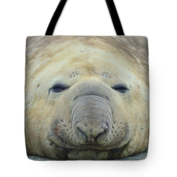 Beach Bum Tote Bag by Tony Beck