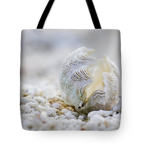 Beach Clam Tote Bag