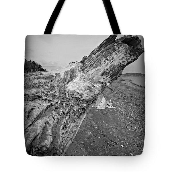 Beach Driftwood View Tote Bag
