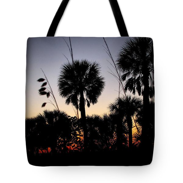 Beach Foliage At Sunset Tote Bag by Phil Penne
