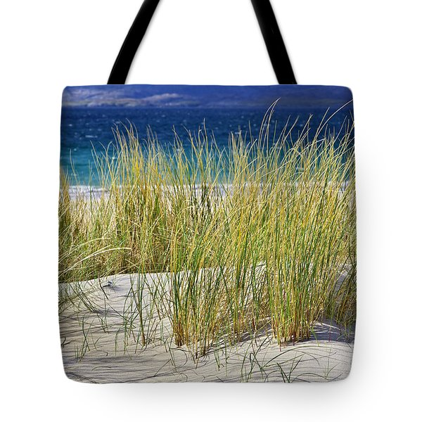 Beach Gras Tote Bag