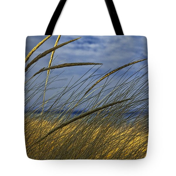 Beach Grass On A Sand Dune At Glen Arbor Michigan Tote Bag