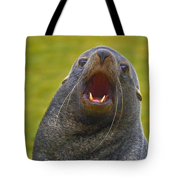 Beach Master Tote Bag