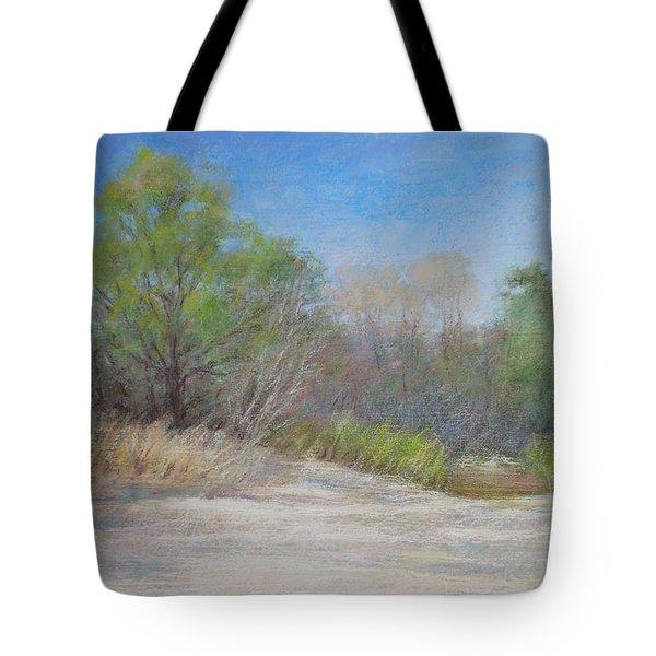 Beach  Tote Bag by Nancy Stutes