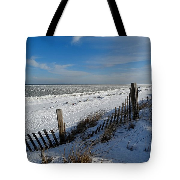 Beach On A Winter Morning Tote Bag by Dianne Cowen