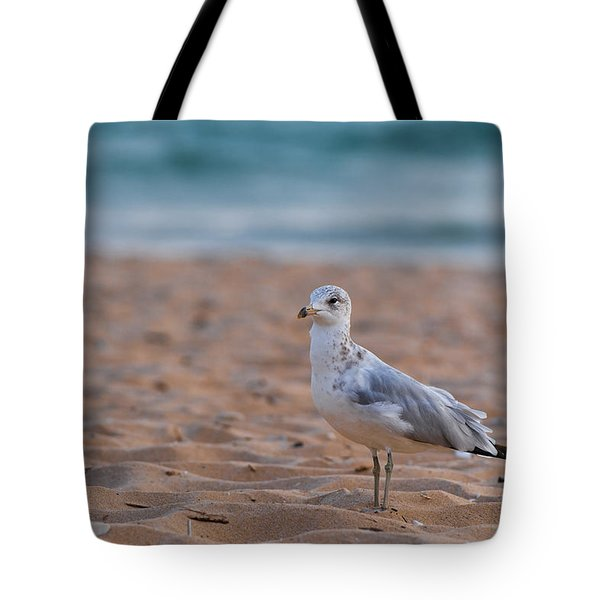 Beach Patrol Tote Bag by Sebastian Musial