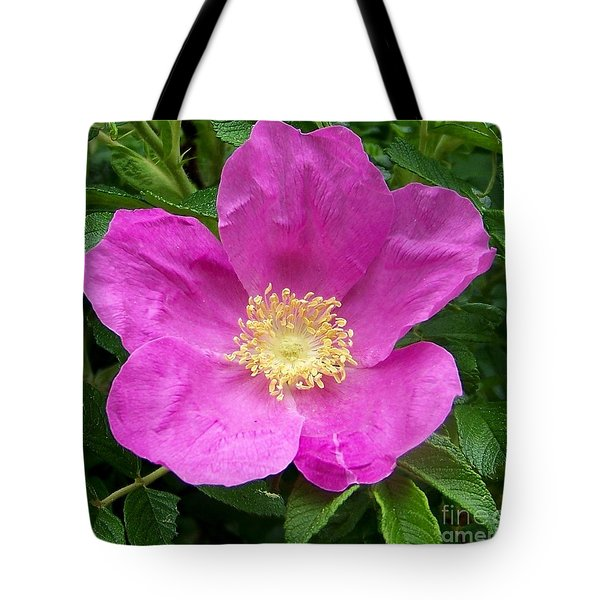 Pink Beach Rose Fully In Bloom Tote Bag by Eunice Miller