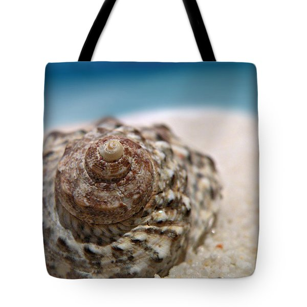 Beach Treasure Tote Bag by Micki Findlay