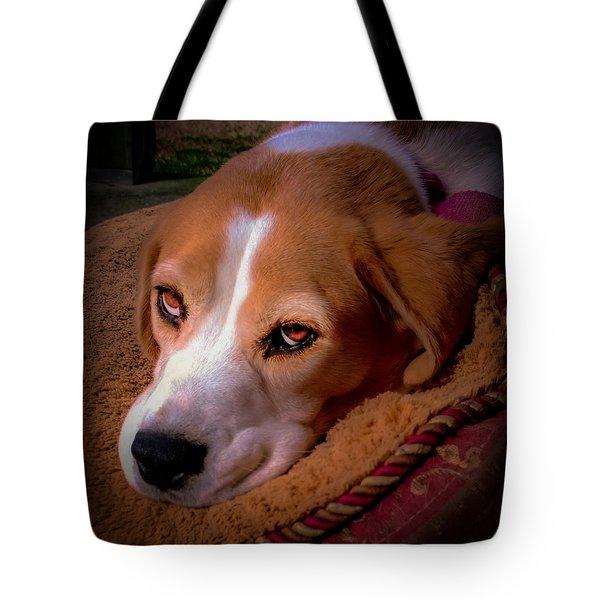 Beagle Blues Tote Bag by Karen Wiles