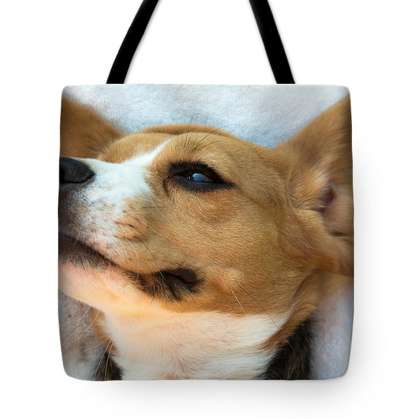 Beagles Dreams Tote Bag