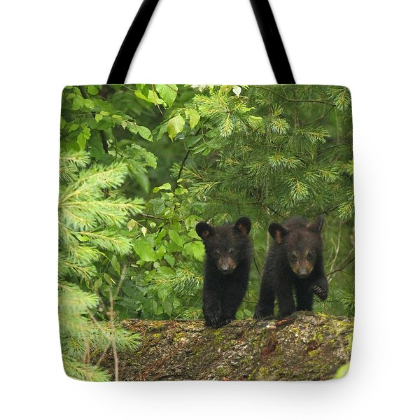 Tote Bag featuring the photograph Bear Buddies by Coby Cooper