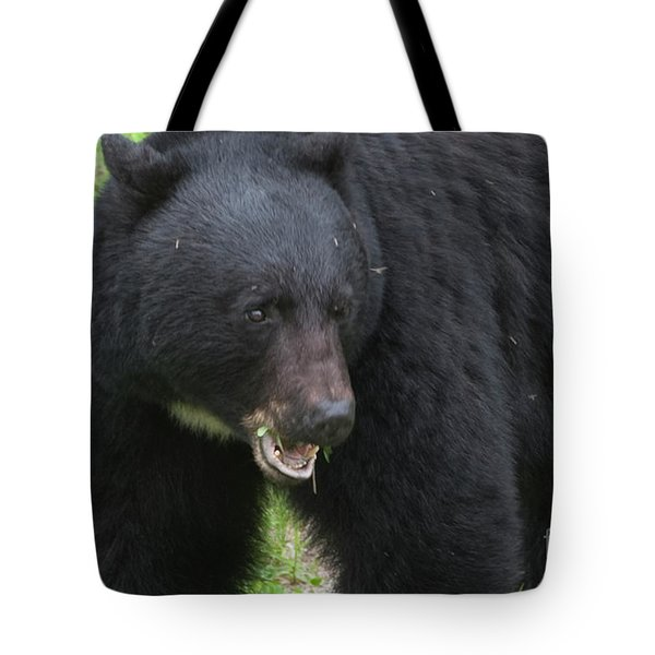 Tote Bag featuring the photograph Bear by Rod Wiens